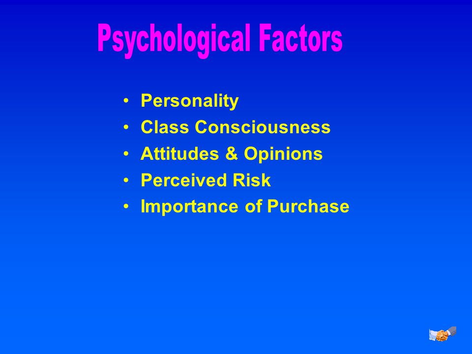 Personality Class Consciousness Attitudes & Opinions Perceived Risk Importance of Purchase