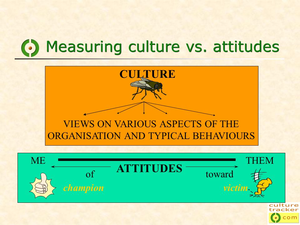 Measuring culture vs.