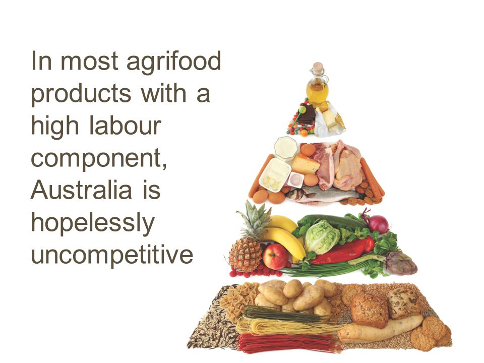 In most agrifood products with a high labour component, Australia is hopelessly uncompetitive