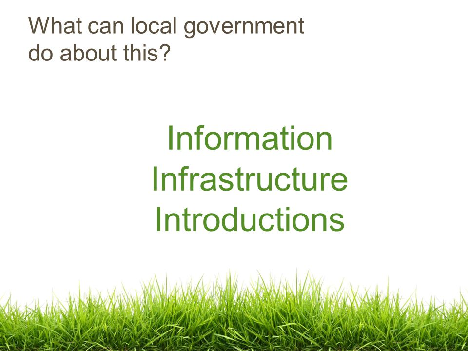 What can local government do about this Information Infrastructure Introductions