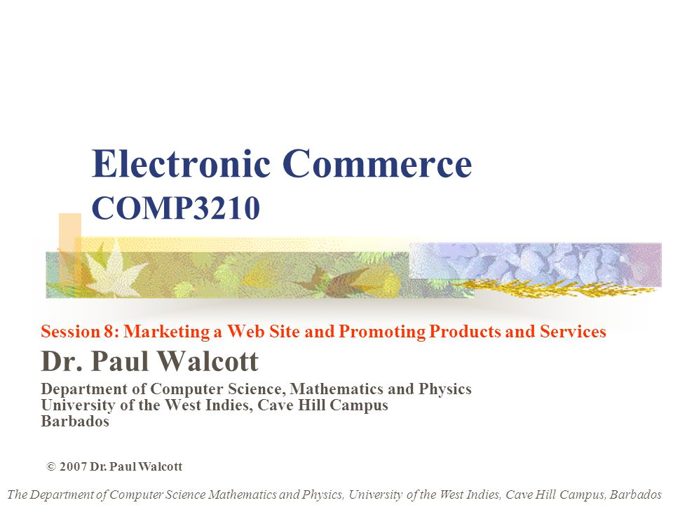 Electronic Commerce COMP3210 Session 8: Marketing a Web Site and Promoting Products and Services Dr.