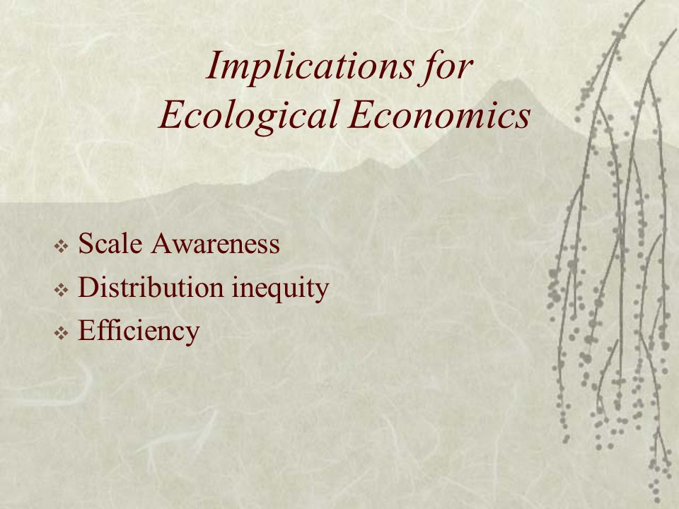 Implications for Ecological Economics  Scale Awareness  Distribution inequity  Efficiency