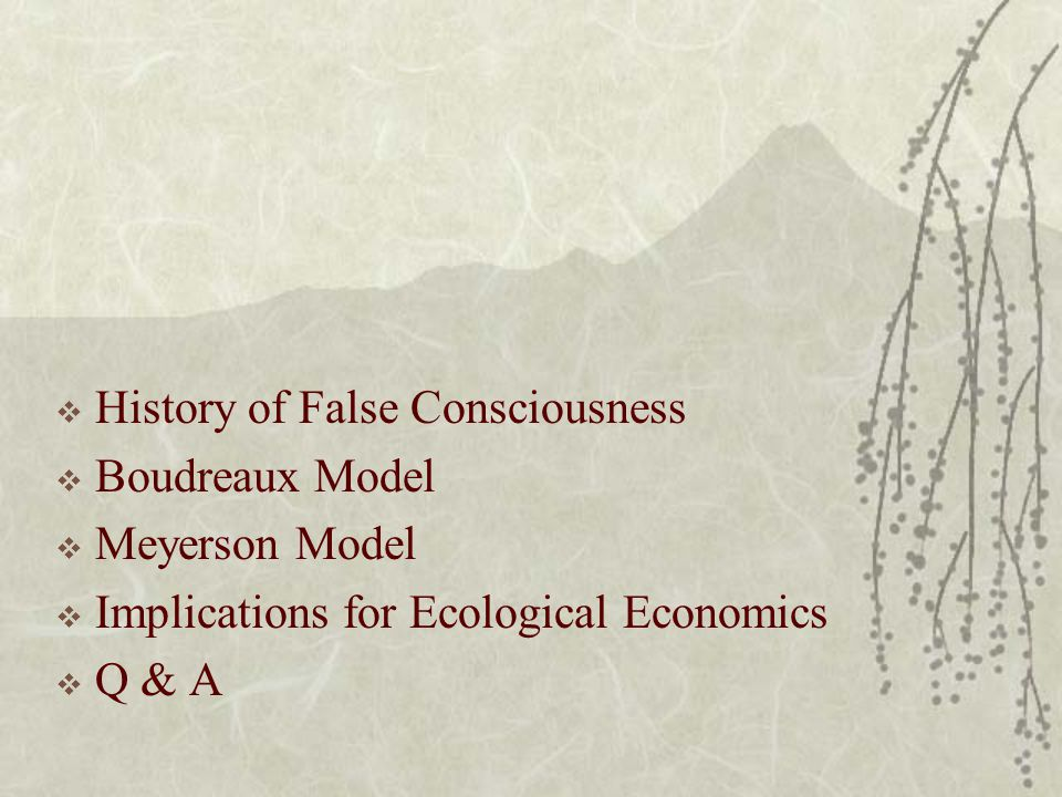  History of False Consciousness  Boudreaux Model  Meyerson Model  Implications for Ecological Economics  Q & A