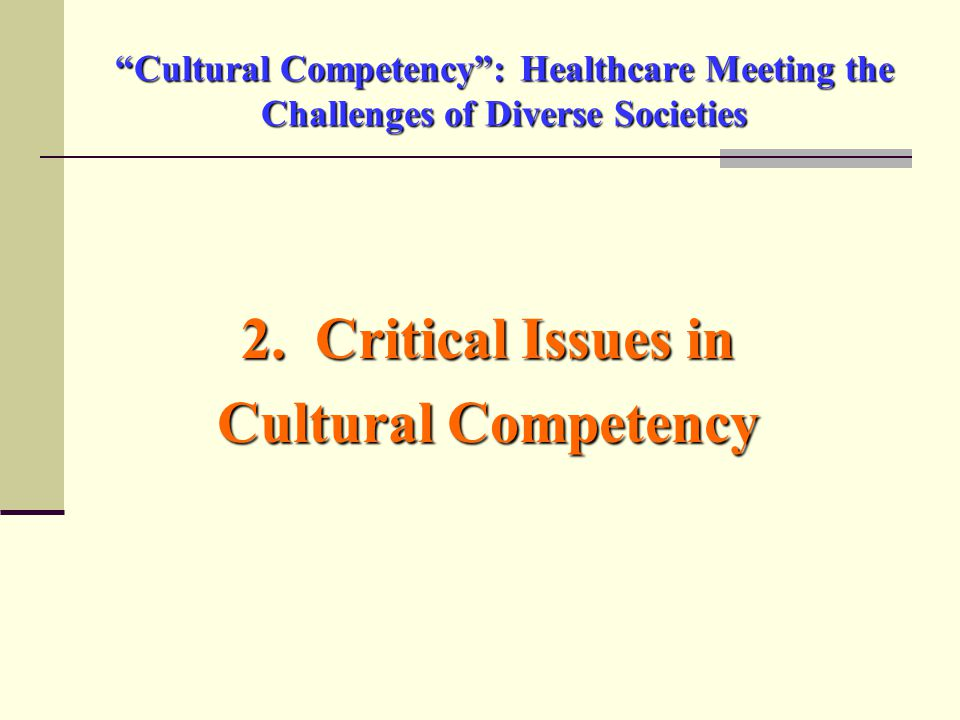 Cultural Competency : Healthcare Meeting the Challenges of Diverse Societies 2.