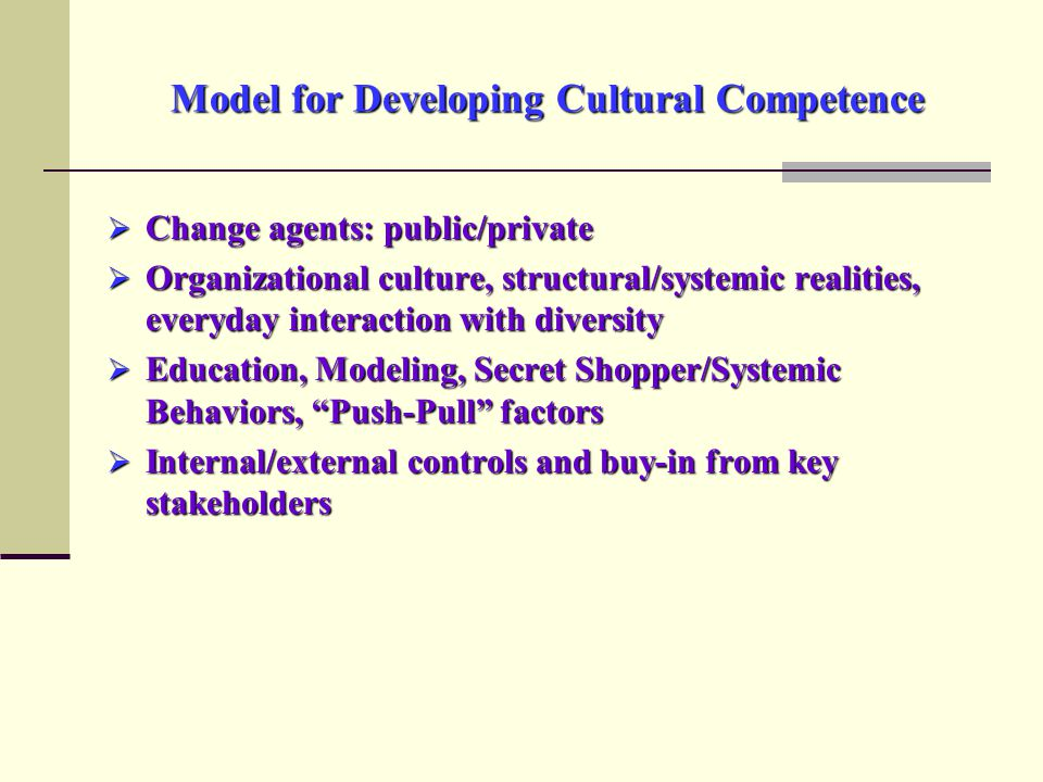 Model for Developing Cultural Competence  Change agents: public/private  Organizational culture, structural/systemic realities, everyday interaction with diversity  Education, Modeling, Secret Shopper/Systemic Behaviors, Push-Pull factors  Internal/external controls and buy-in from key stakeholders