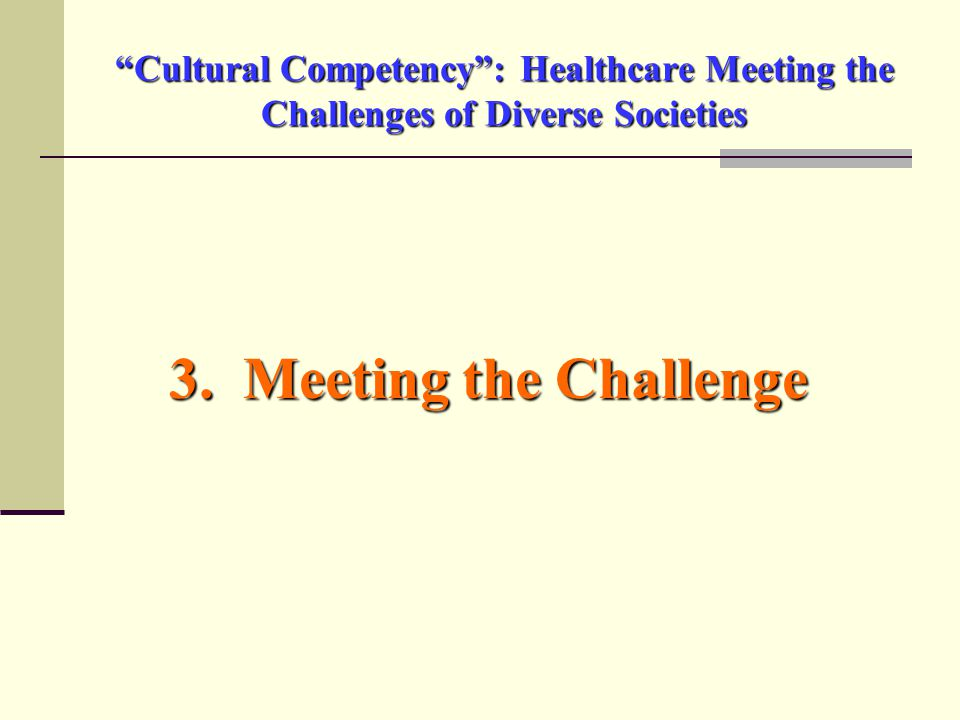 Cultural Competency : Healthcare Meeting the Challenges of Diverse Societies 3.