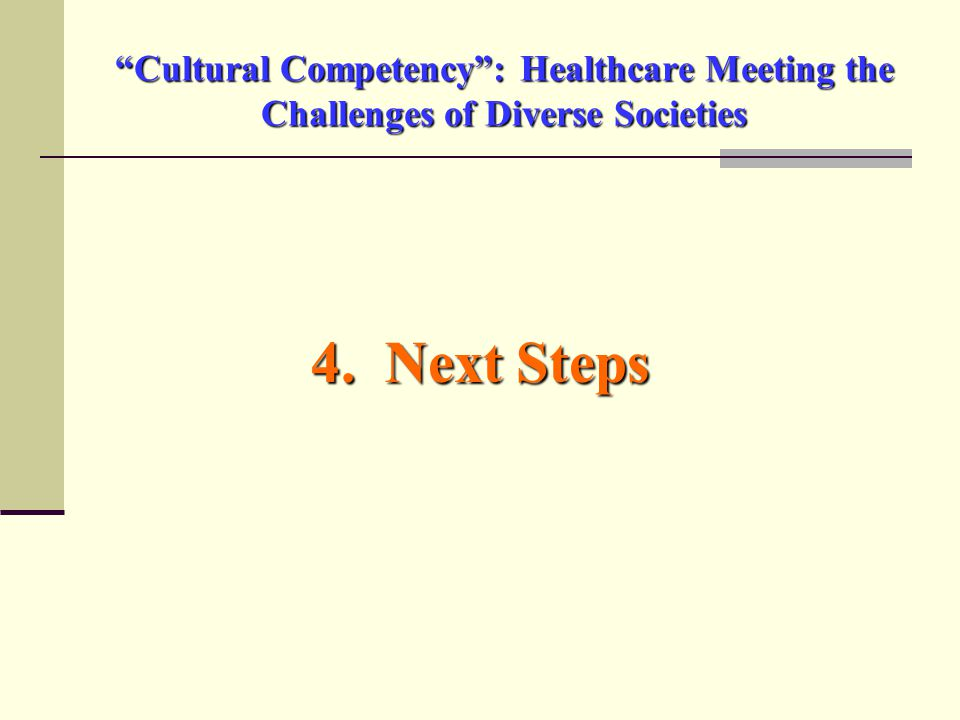 Cultural Competency : Healthcare Meeting the Challenges of Diverse Societies 4. Next Steps