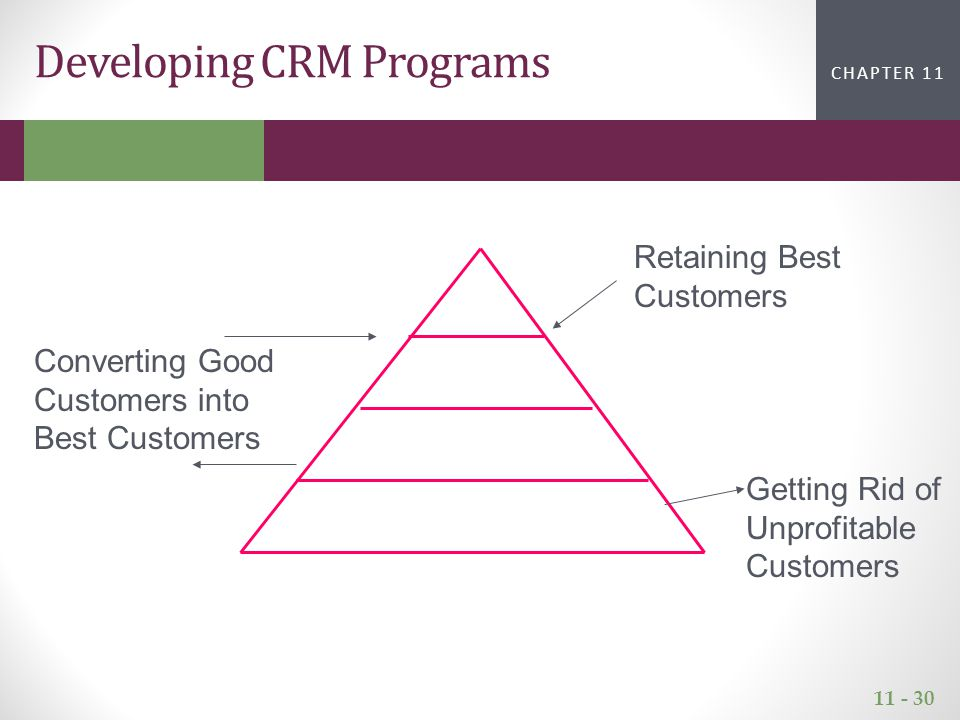 11 - 30 CHAPTER 2CHAPTER 1 CHAPTER 11 Developing CRM Programs Retaining Best Customers Converting Good Customers into Best Customers Getting Rid of Unprofitable Customers