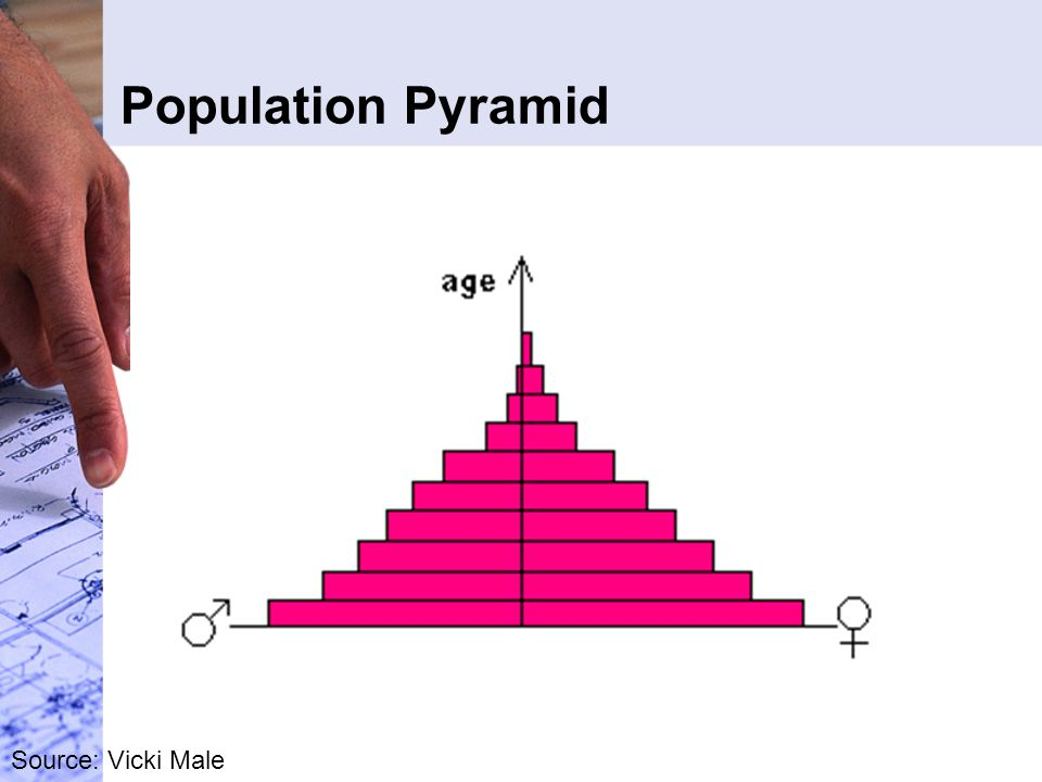 Population Pyramid Source: Vicki Male