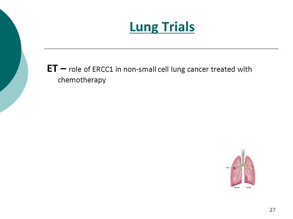 27 Lung Trials ET – role of ERCC1 in non-small cell lung cancer treated with chemotherapy
