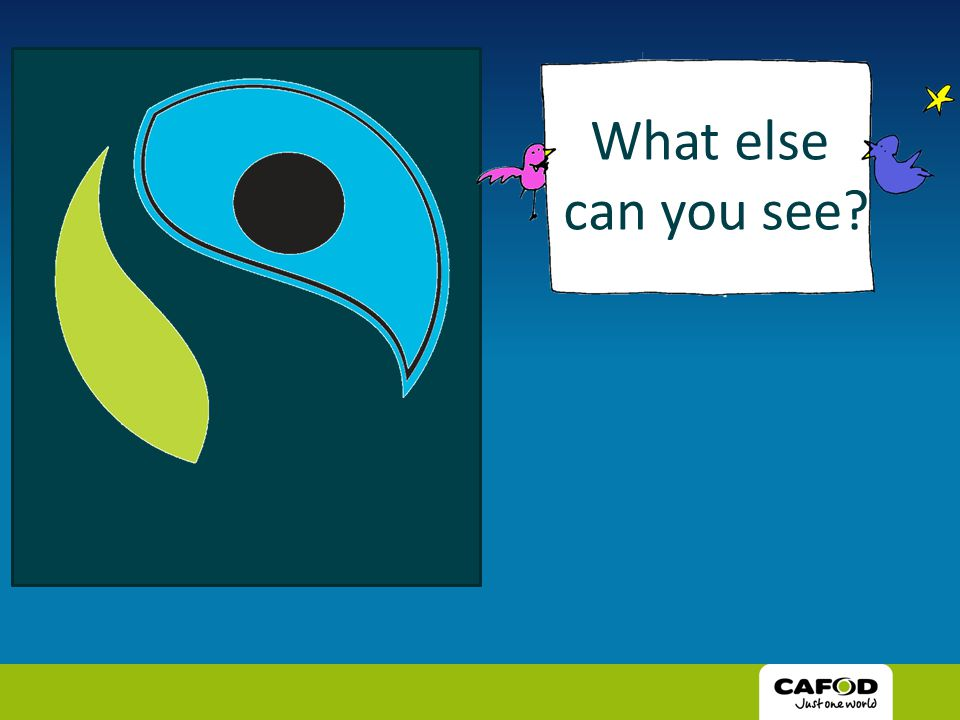 What else can you see?