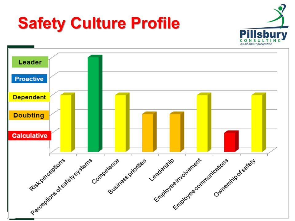 Safety Culture Profile 13