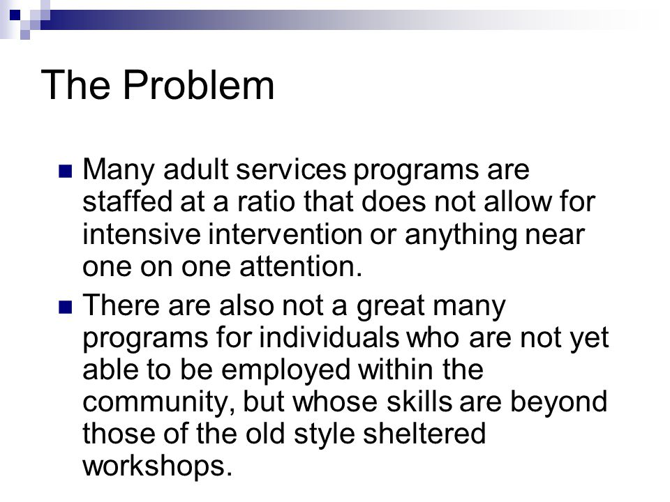 The Problem Many adult services programs are staffed at a ratio that does not allow for intensive intervention or anything near one on one attention.