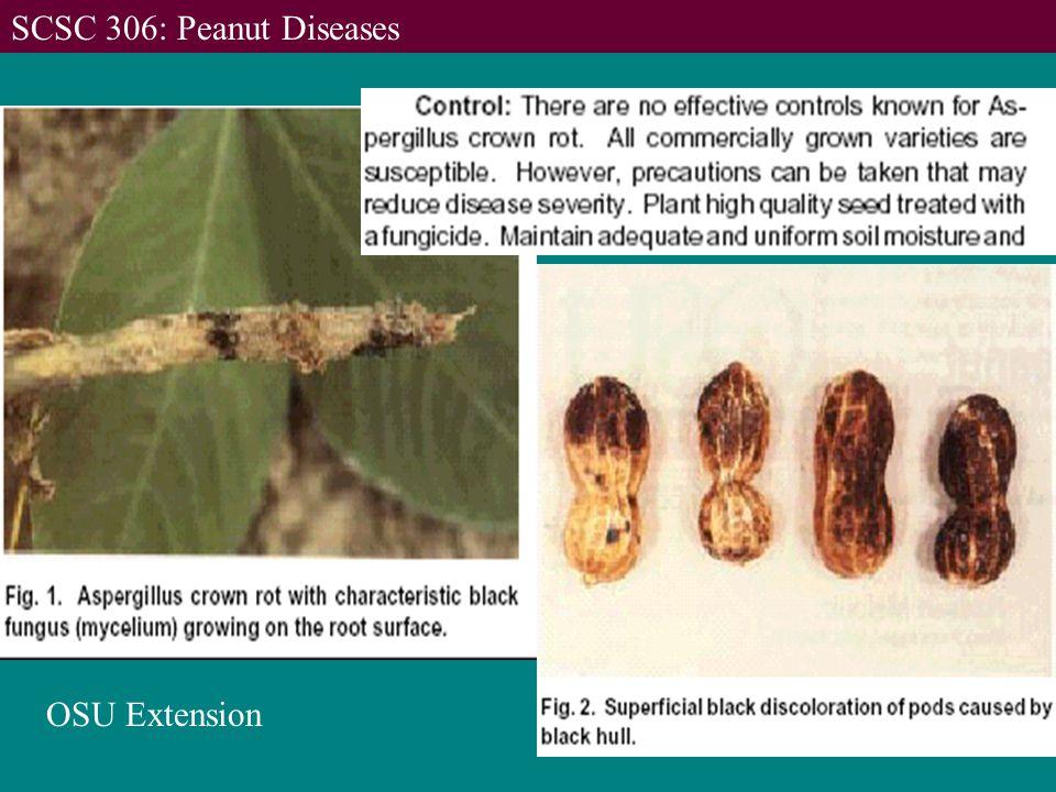 OSU Extension SCSC 306: Peanut Diseases