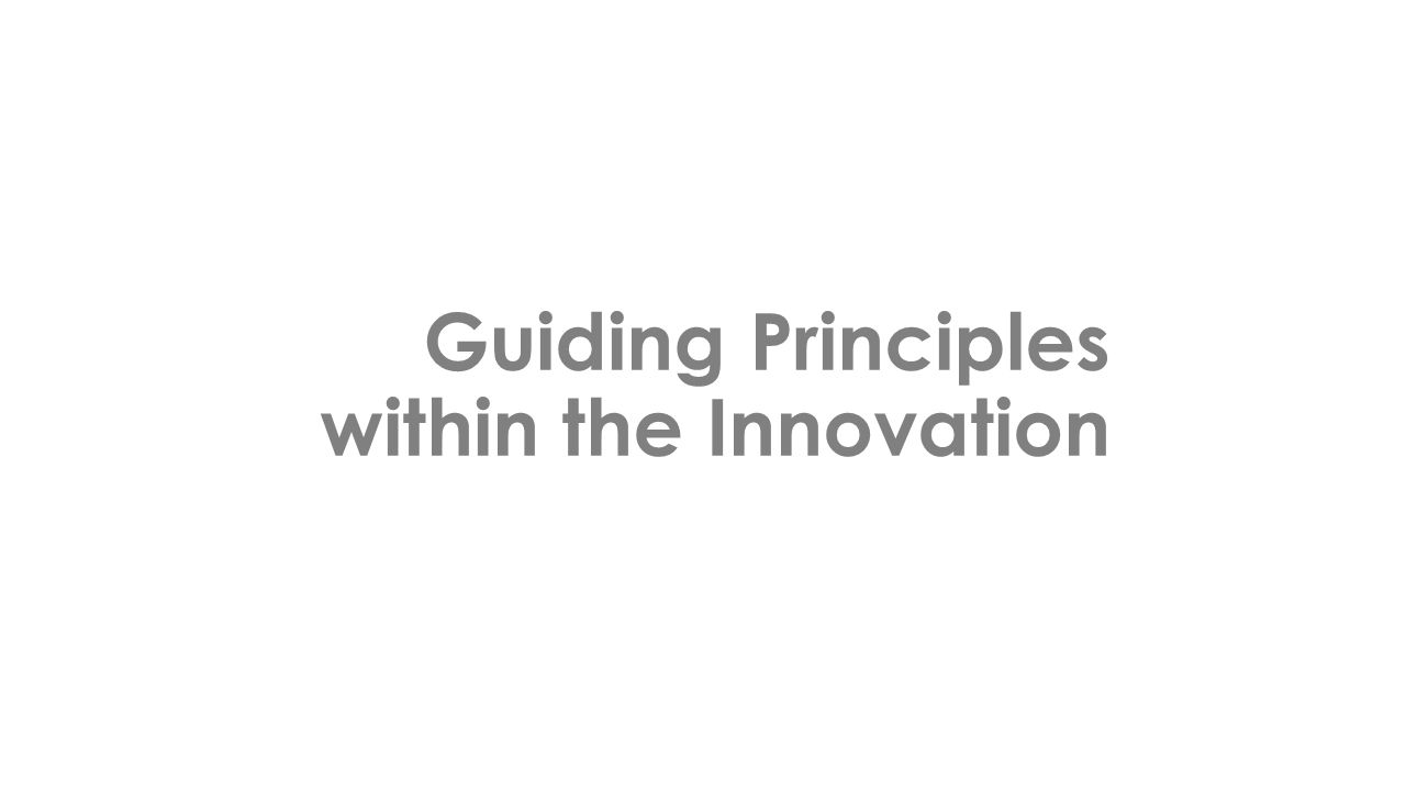 Guiding Principles within the Innovation