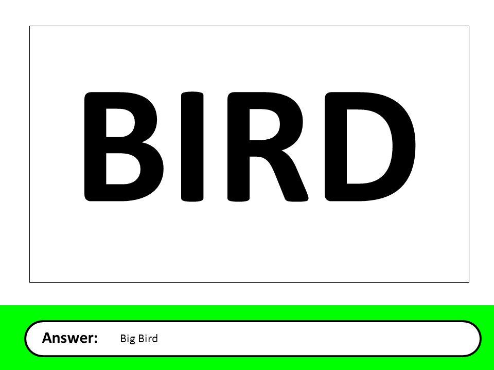 Answer: Big Bird BIRD