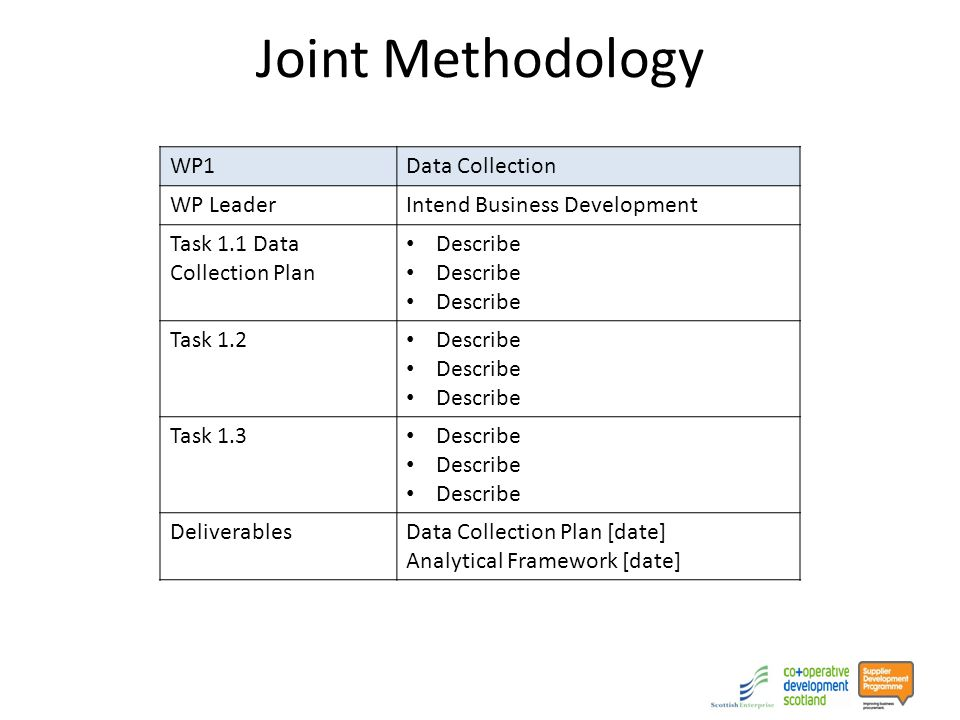 WP1Data Collection WP LeaderIntend Business Development Task 1.1 Data Collection Plan Describe Task 1.2 Describe Task 1.3 Describe DeliverablesData Collection Plan [date] Analytical Framework [date]