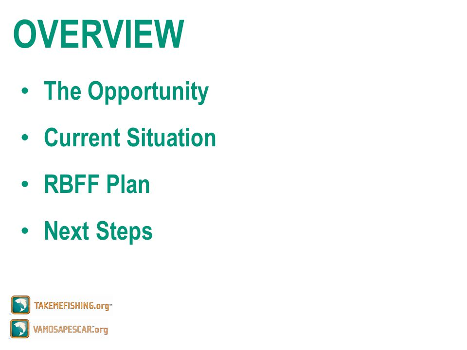 OVERVIEW The Opportunity Current Situation RBFF Plan Next Steps