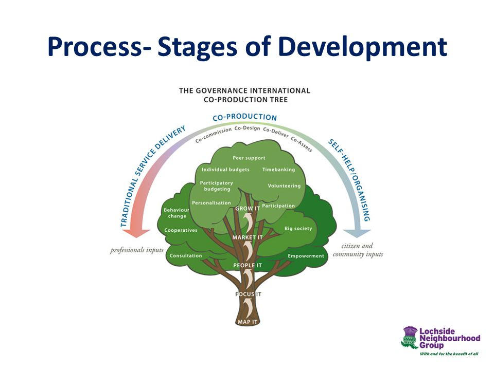 Process- Stages of Development