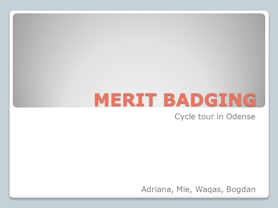 MERIT BADGING MERIT BADGING Cycle tour in Odense Adriana, Mie, Waqas, Bogdan