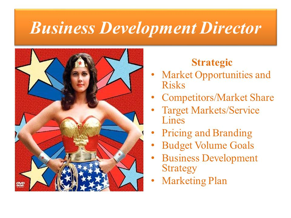 Business Development Director Strategic Market Opportunities and Risks Competitors/Market Share Target Markets/Service Lines Pricing and Branding Budget Volume Goals Business Development Strategy Marketing Plan