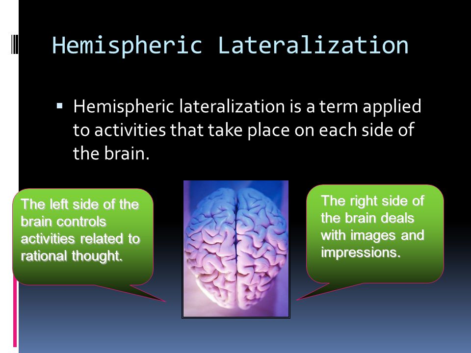 Hemispheric Lateralization  Hemispheric lateralization is a term applied to activities that take place on each side of the brain.