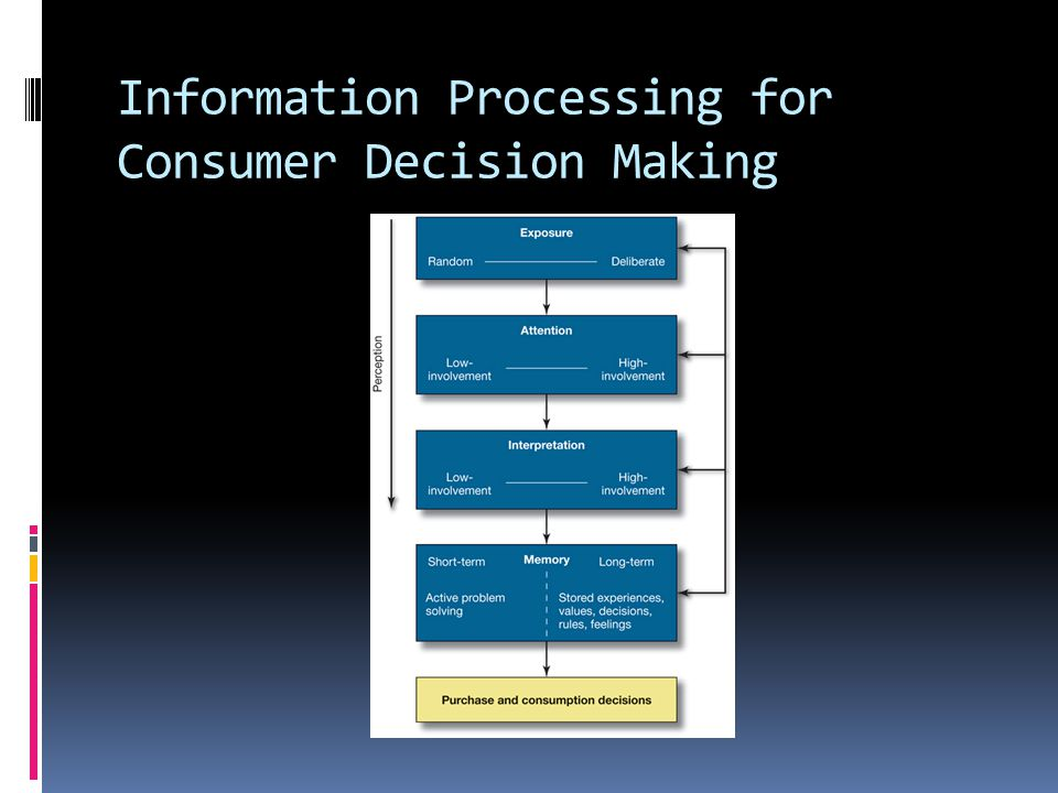 Information Processing for Consumer Decision Making