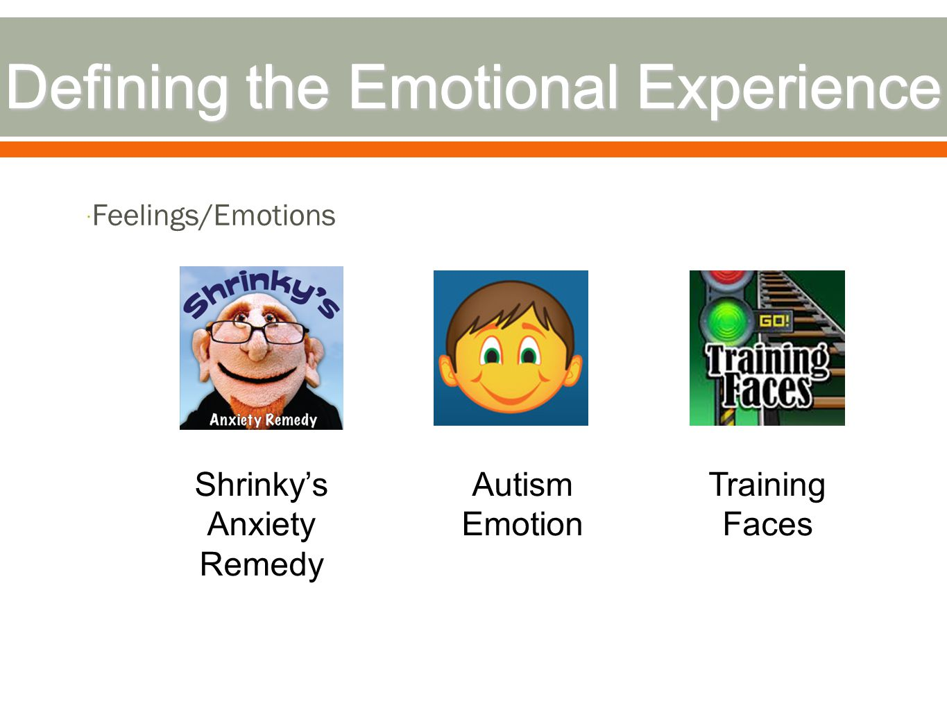  Feelings/Emotions Autism Emotion Shrinky's Anxiety Remedy Training Faces