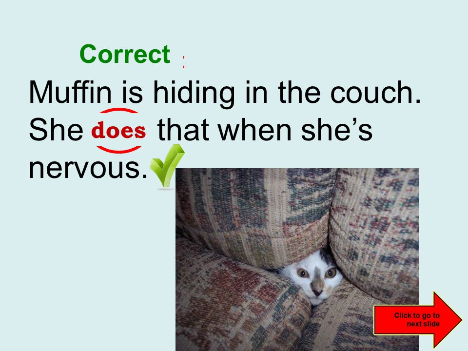 Muffin is hiding in the couch. She do that when she's nervous. incorrect does Correct