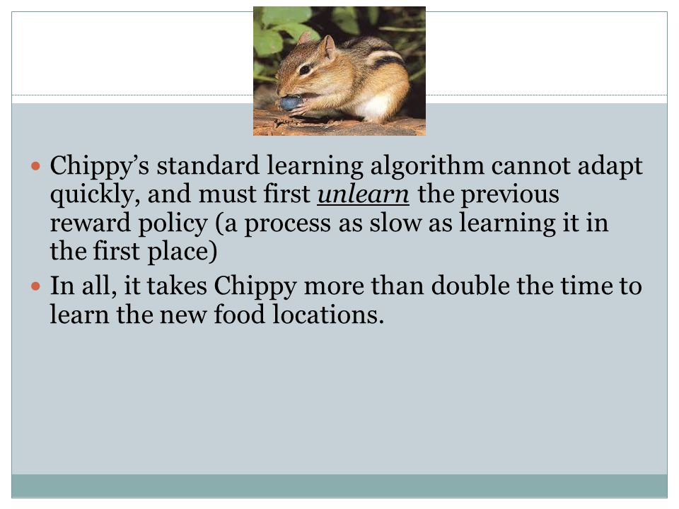 Chippy's standard learning algorithm cannot adapt quickly, and must first unlearn the previous reward policy (a process as slow as learning it in the first place) In all, it takes Chippy more than double the time to learn the new food locations.