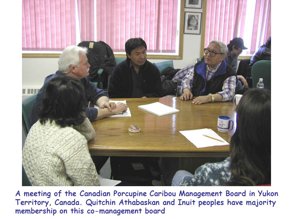 A meeting of the Canadian Porcupine Caribou Management Board in Yukon Territory, Canada.