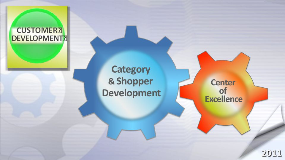 2011 Category & Shopper Development Center of Excellence PROJECT CATAPULT