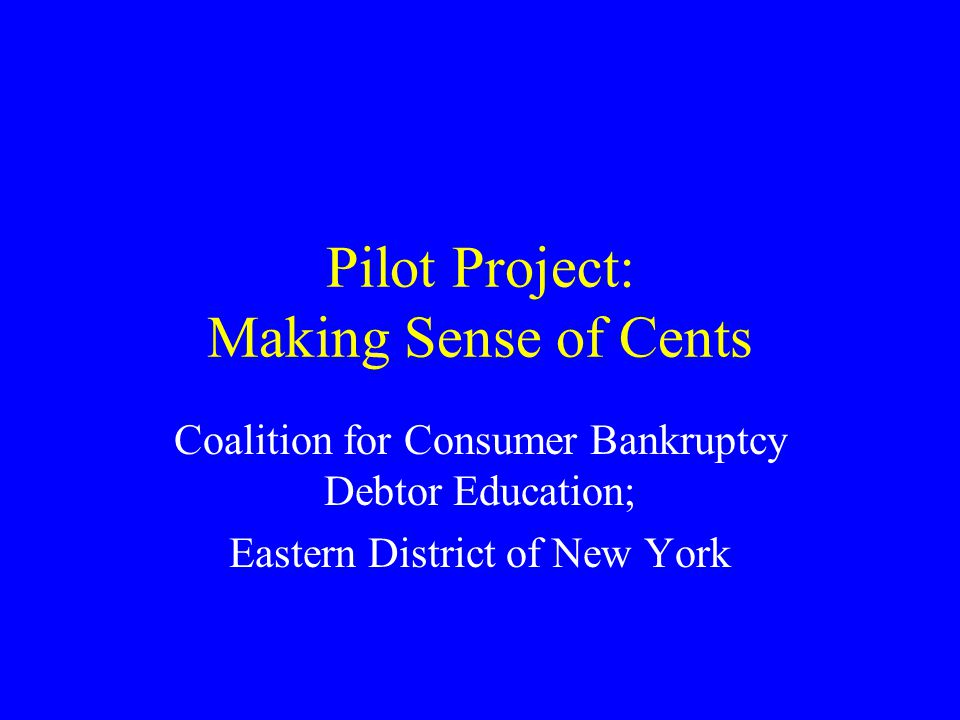 Pilot Project: Making Sense of Cents Coalition for Consumer Bankruptcy Debtor Education; Eastern District of New York
