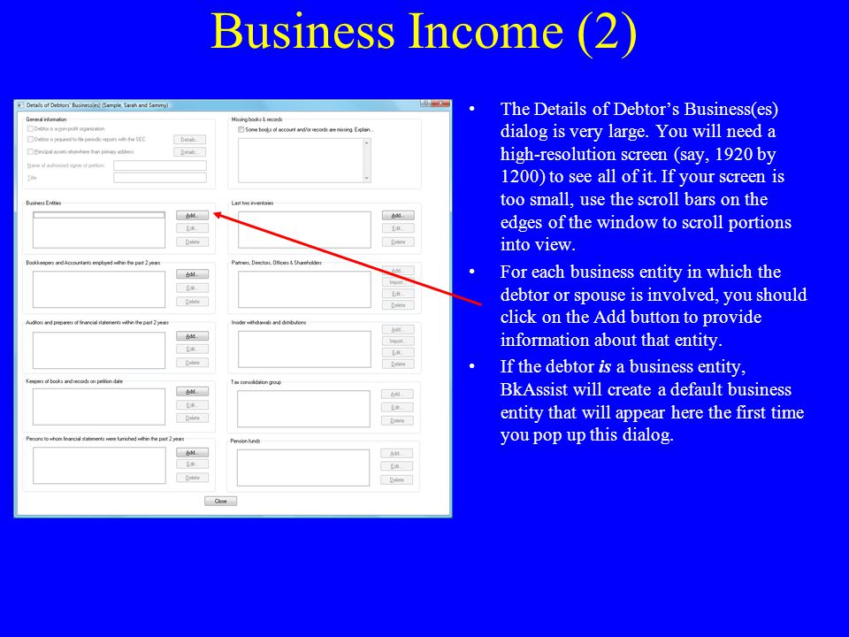 Business Income (2) The Details of Debtor's Business(es) dialog is very large.
