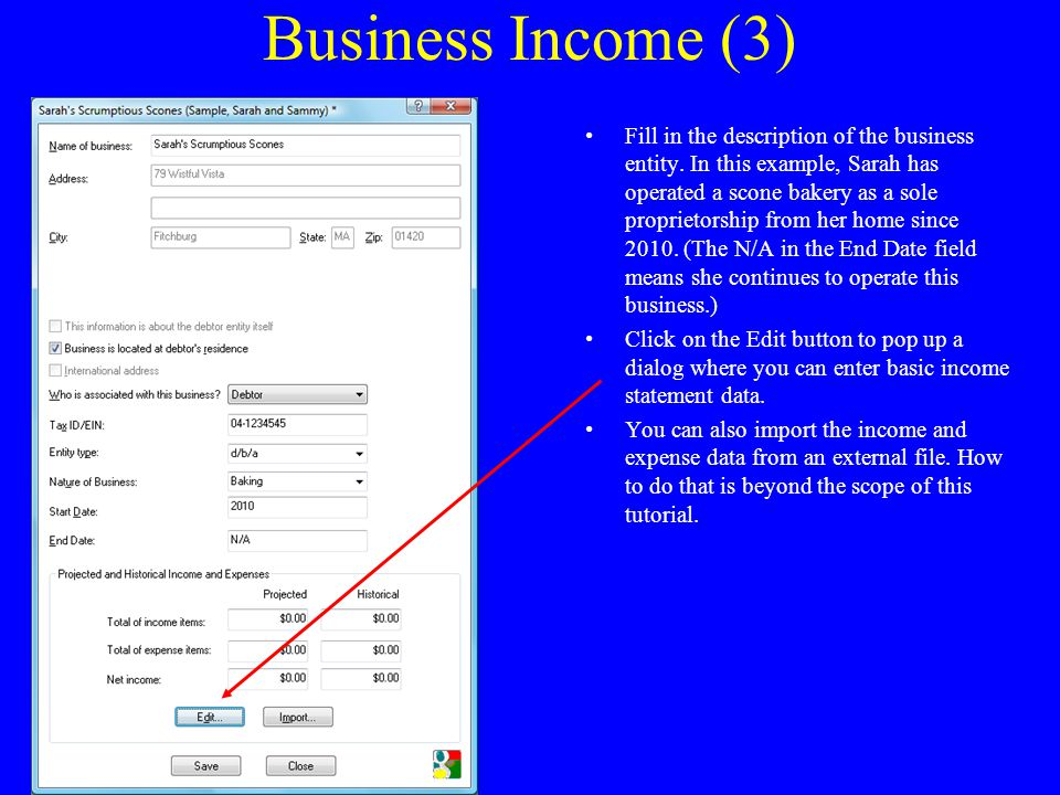 Business Income (3) Fill in the description of the business entity.