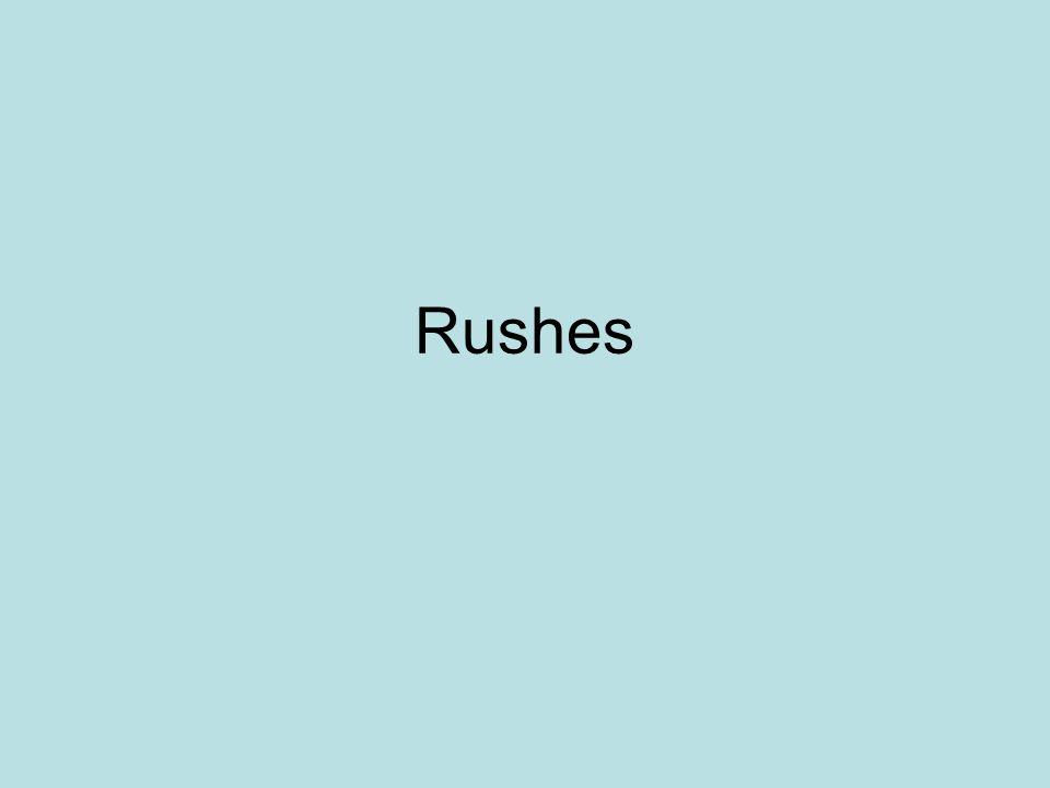 Rushes