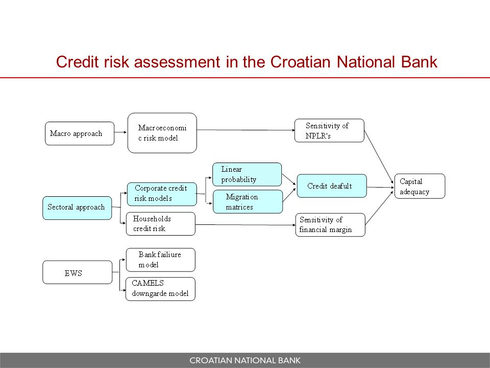 Credit risk assessment in the Croatian National Bank
