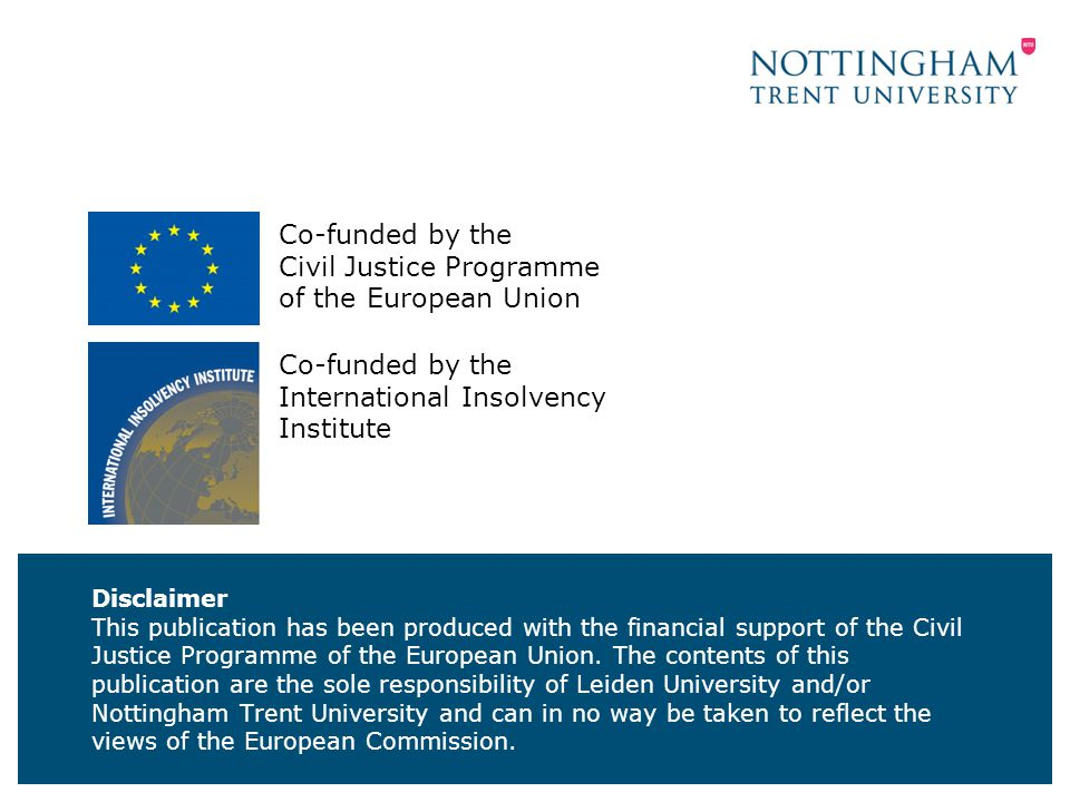 Disclaimer This publication has been produced with the financial support of the Civil Justice Programme of the European Union.
