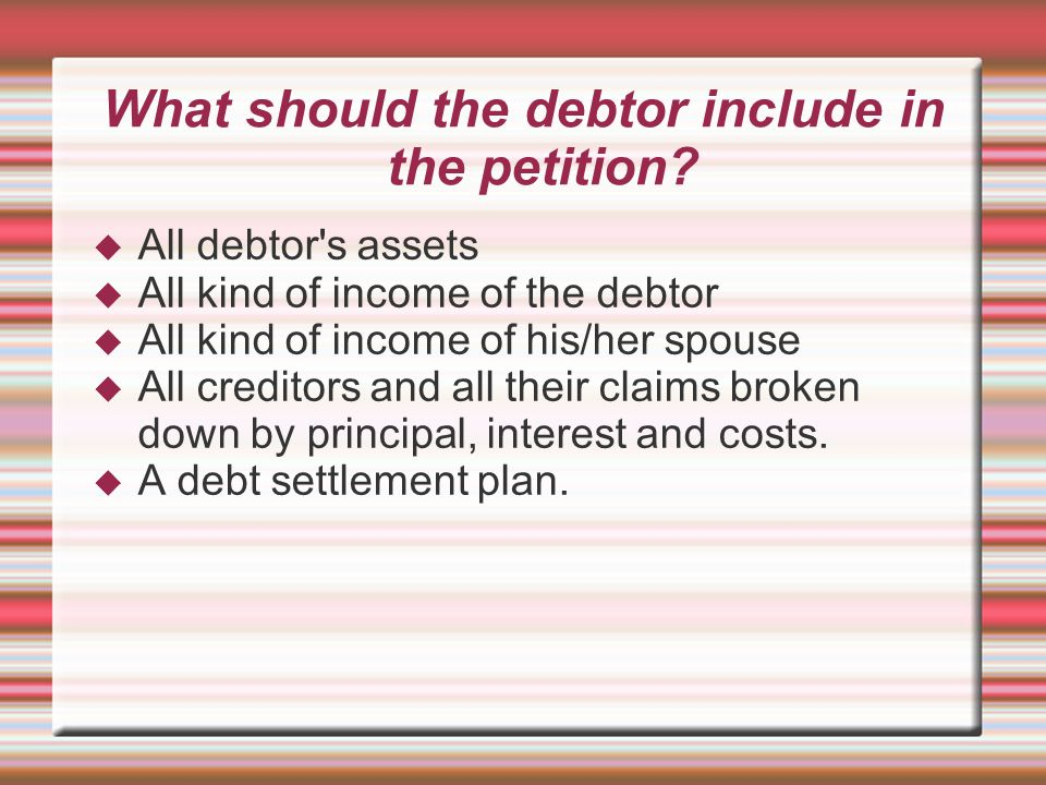 What should the debtor include in the petition?  All debtor's assets  All kind of income of the debtor  All kind of income of his/her spouse  All