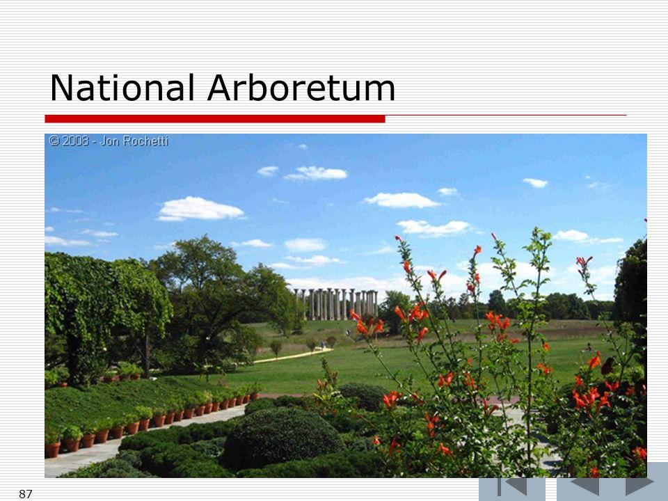 National Arboretum 87