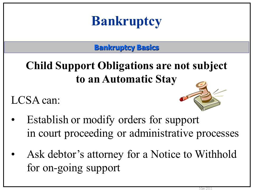 Bankruptcy May 2011 Bankruptcy Basics Child support debt also allows actions to: Establish paternity Establish a child support order Establish a medical support order Collect support that is not property of the estate Take criminal action against the debtor