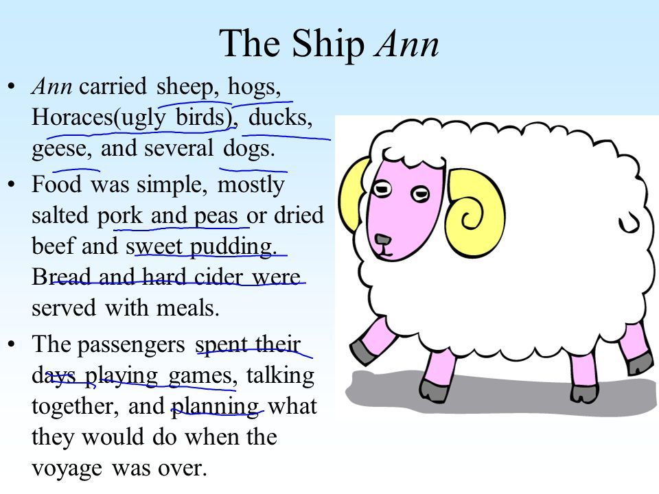 The Ship Ann Ann carried sheep, hogs, Horaces(ugly birds), ducks, geese, and several dogs. Food was simple, mostly salted pork and peas or dried beef