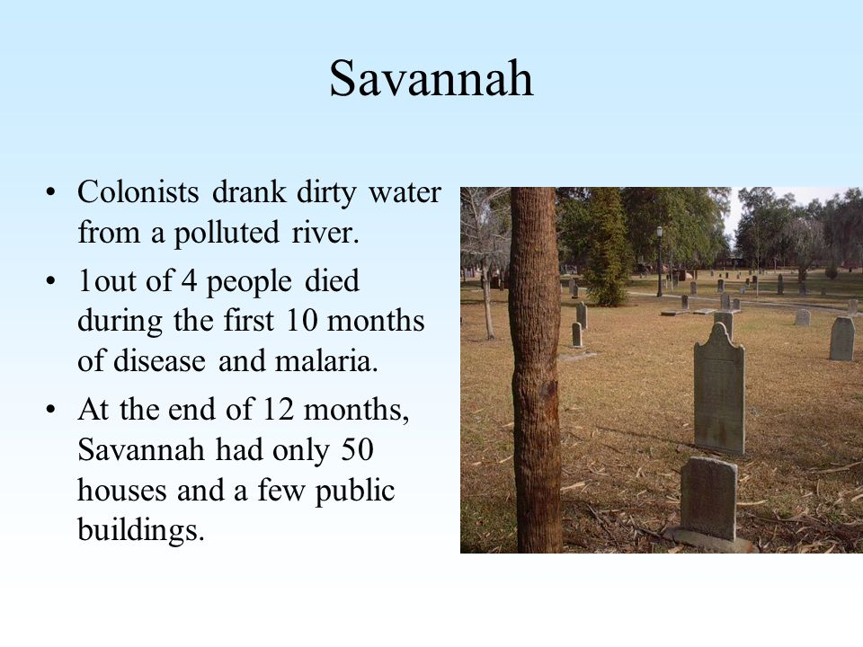 Savannah Colonists drank dirty water from a polluted river. 1out of 4 people died during the first 10 months of disease and malaria. At the end of 12
