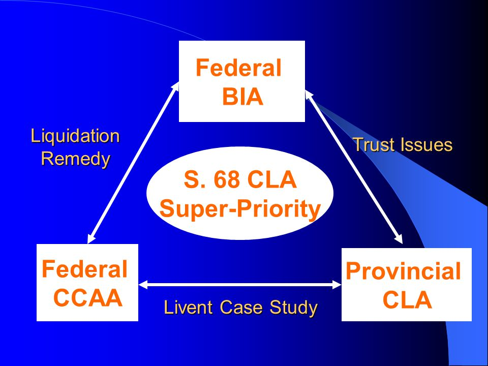 Federal CCAA Provincial CLA Federal BIA Liquidation Remedy Trust Issues Livent Case Study S.