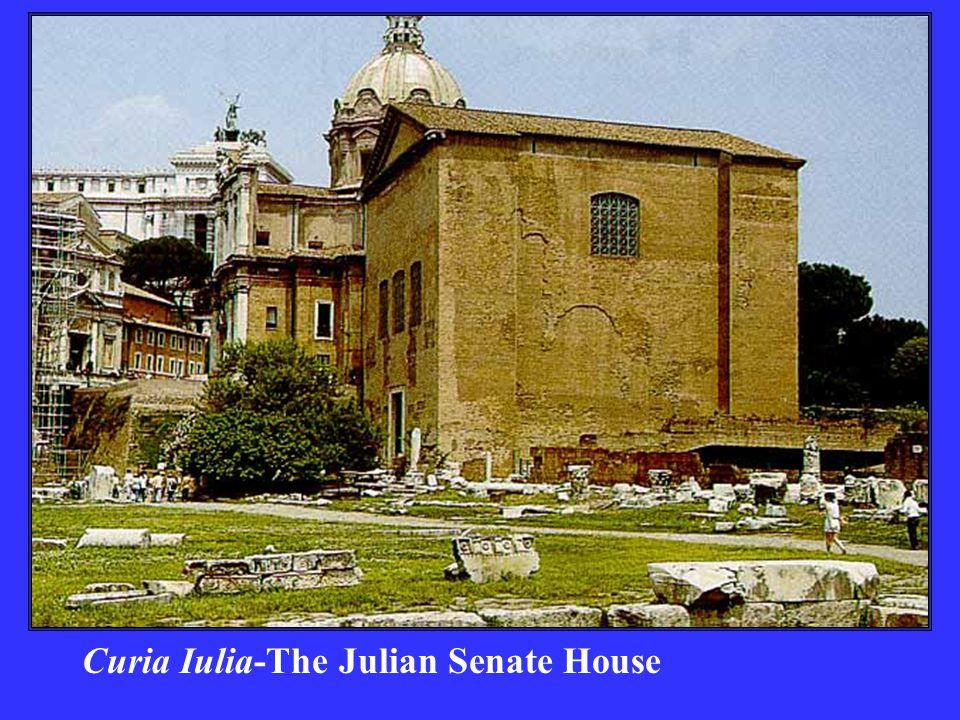 Curia Iulia-The Julian Senate House