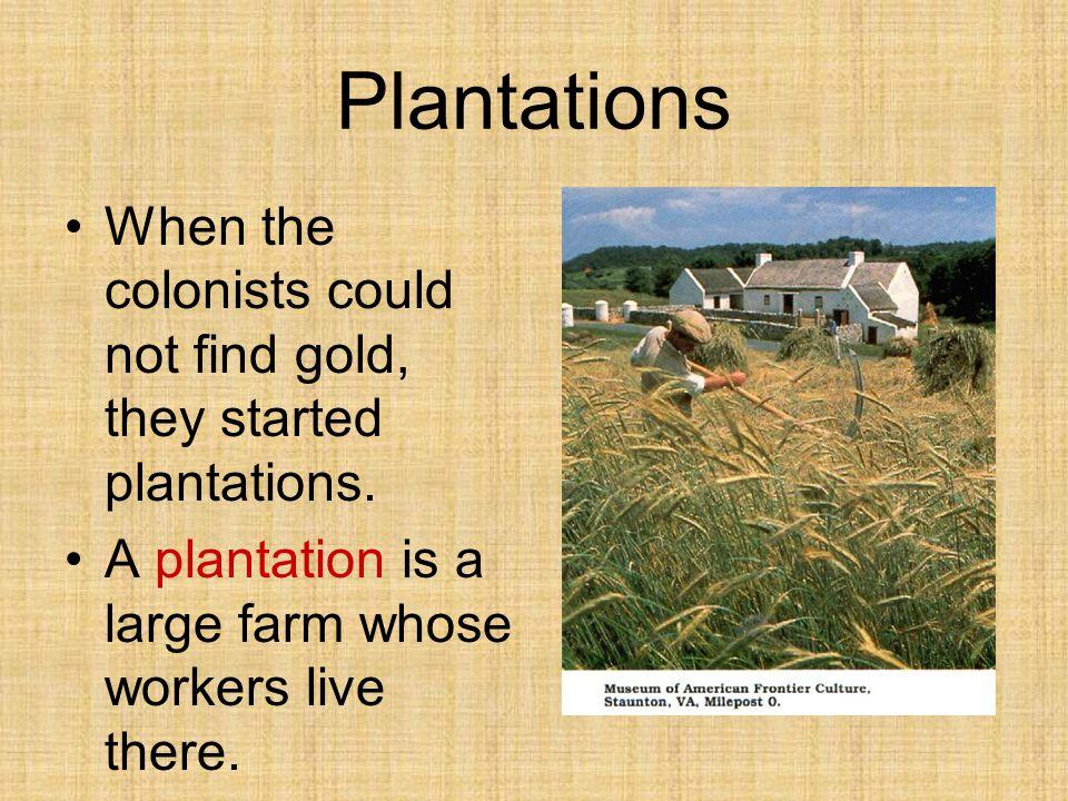 Forced Labor Most workers were indentured servants or enslaved Africans.