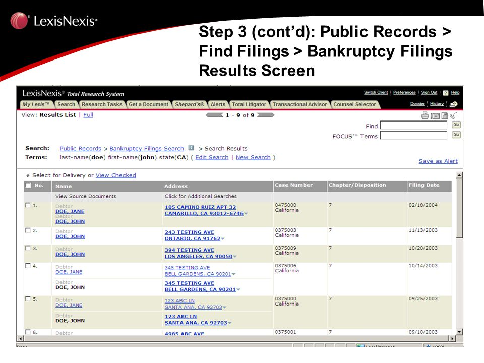 Step 3 (cont'd): Public Records > Find Filings > Bankruptcy Filings Results Screen