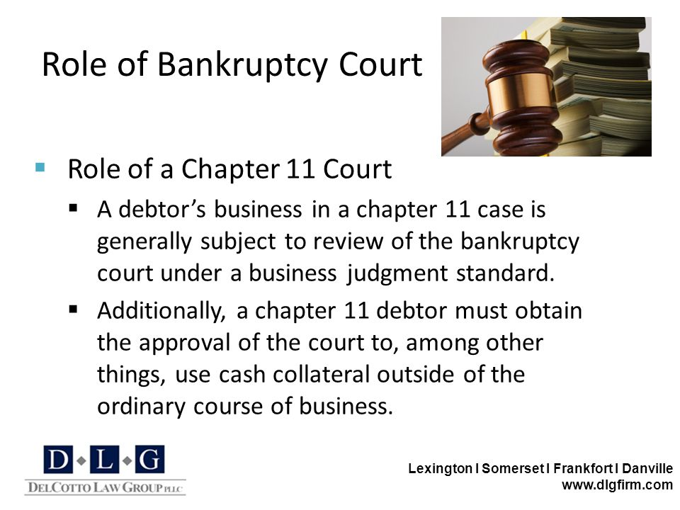 Lexington I Somerset I Frankfort I Danville www.dlgfirm.com Role of Bankruptcy Court  Role of a Chapter 11 Court  A debtor's business in a chapter 1