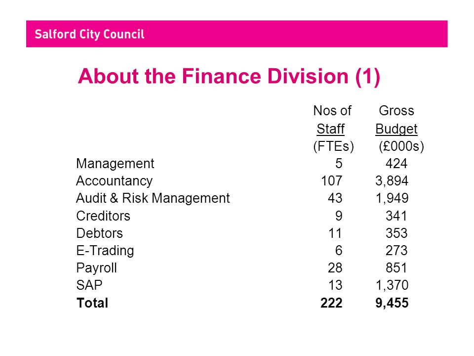 About the Finance Division (2) Some Key Statistics Accountancy£670m revenue & £115m capital exp managed Internal Audit258 audits, 16 external computer audit clients Creditors129,000 invoices paid, value £510m Debtors44,000 invoices raised, value £125m E-Trading31,000 orders processed, value £97m Payroll135,000 payslips processed, total pay £207m