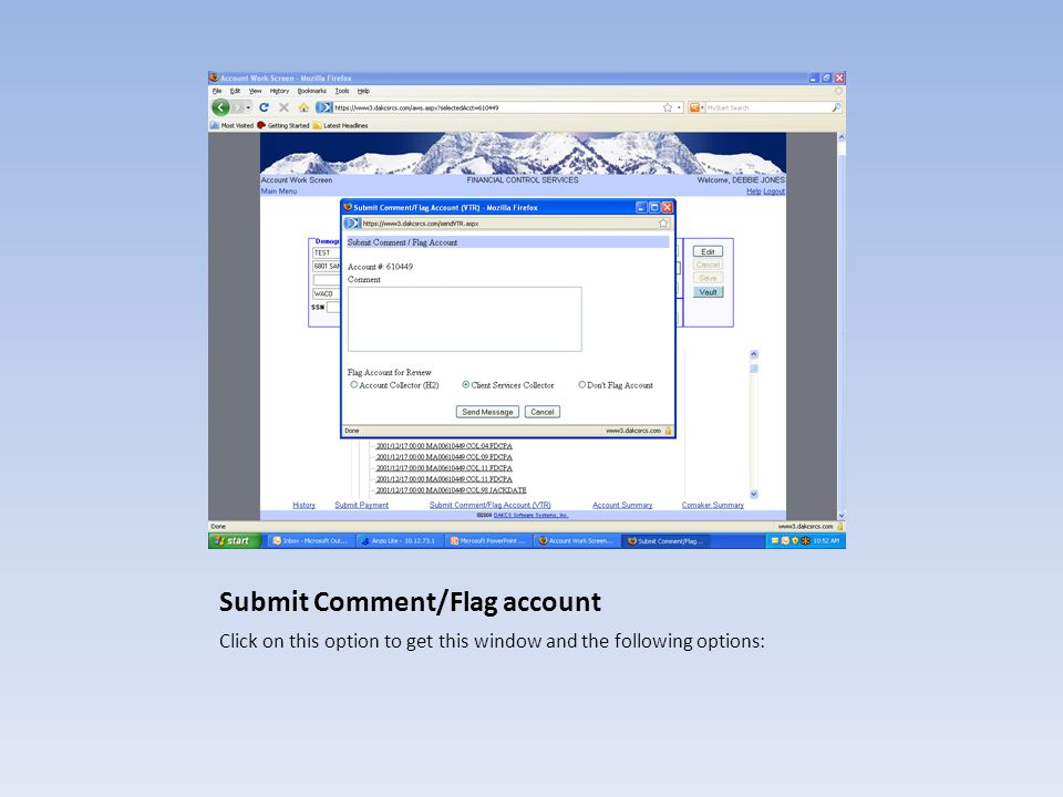 Submit Comment/Flag account Click on this option to get this window and the following options: